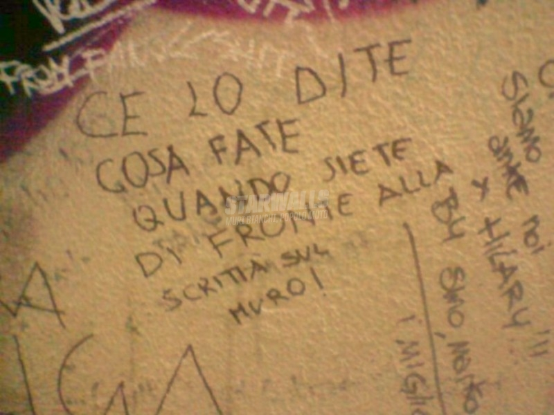 Scritte sui Muri Chiedetelo a Ligabue