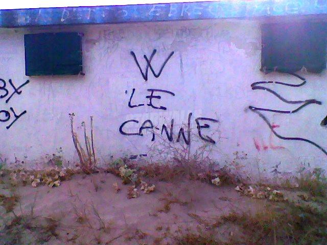Scritte sui Muri legalize it