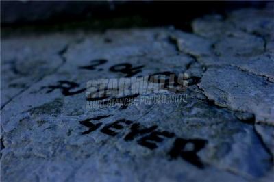 Scritte sui Muri bigiare
