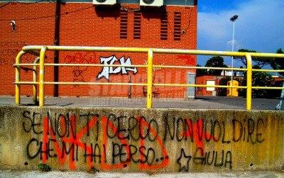 Scritte sui Muri me la sto solo tirando un pò ..