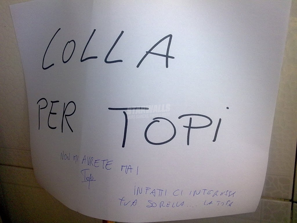 Scritte sui Muri Fight the topa