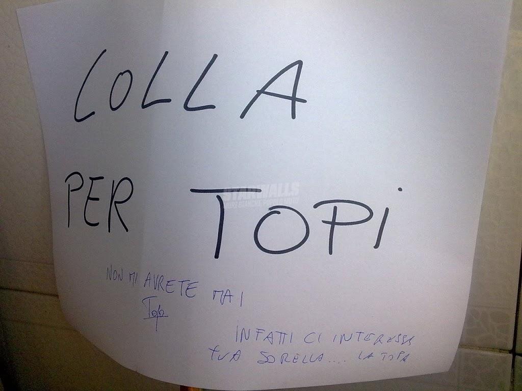 Scritte sui Muri Fight the topa