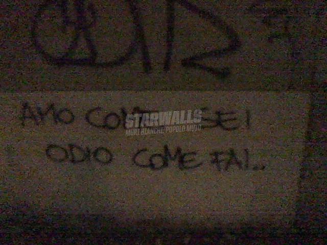 Scritte sui Muri Odi et amo