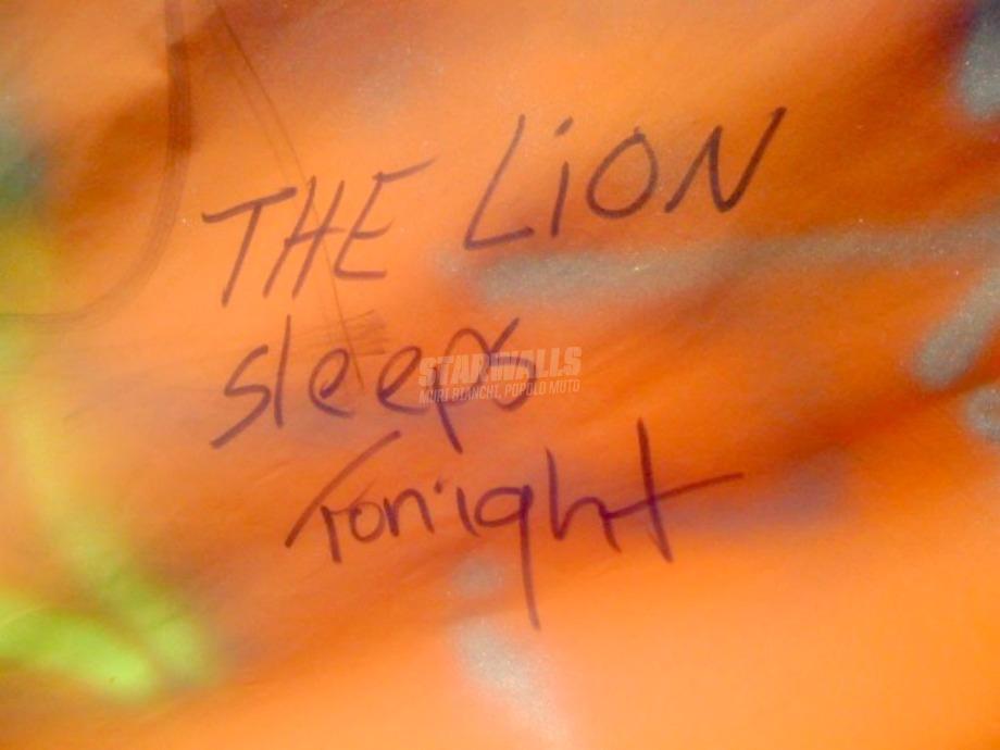 Scritte sui Muri In the jungle