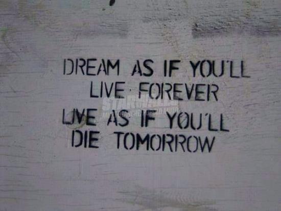 Scritte sui Muri Dream & live