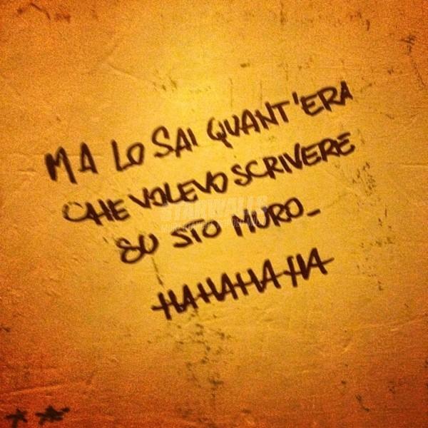 Scritte sui Muri Ce l'ho fatta