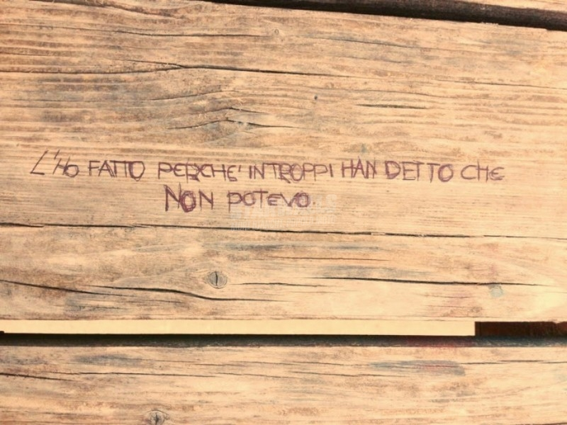 Scritte sui Muri Bastian contrario