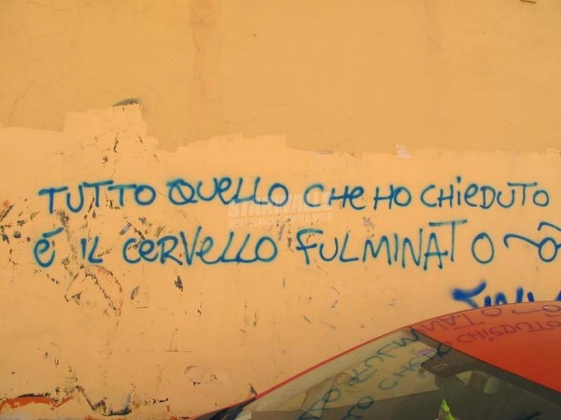 Scritte sui Muri Bollito