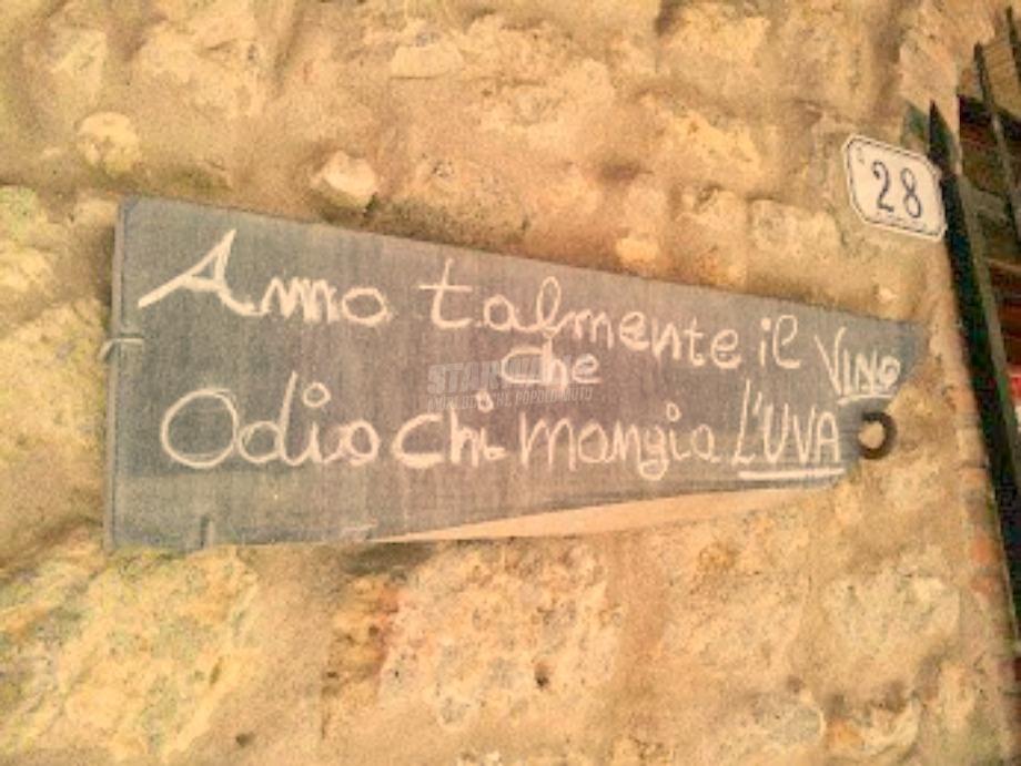 Scritte sui Muri Buon vino fa buon sangue