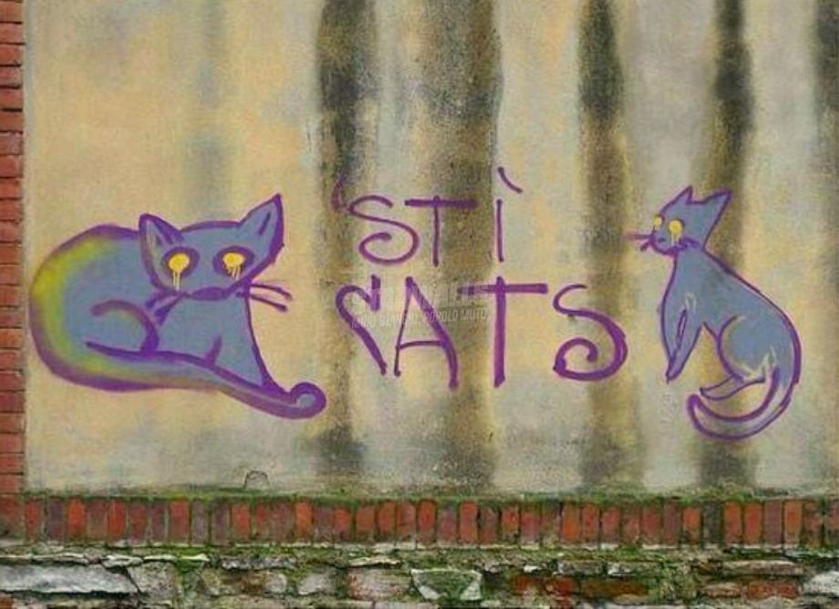 Scritte sui Muri Felini