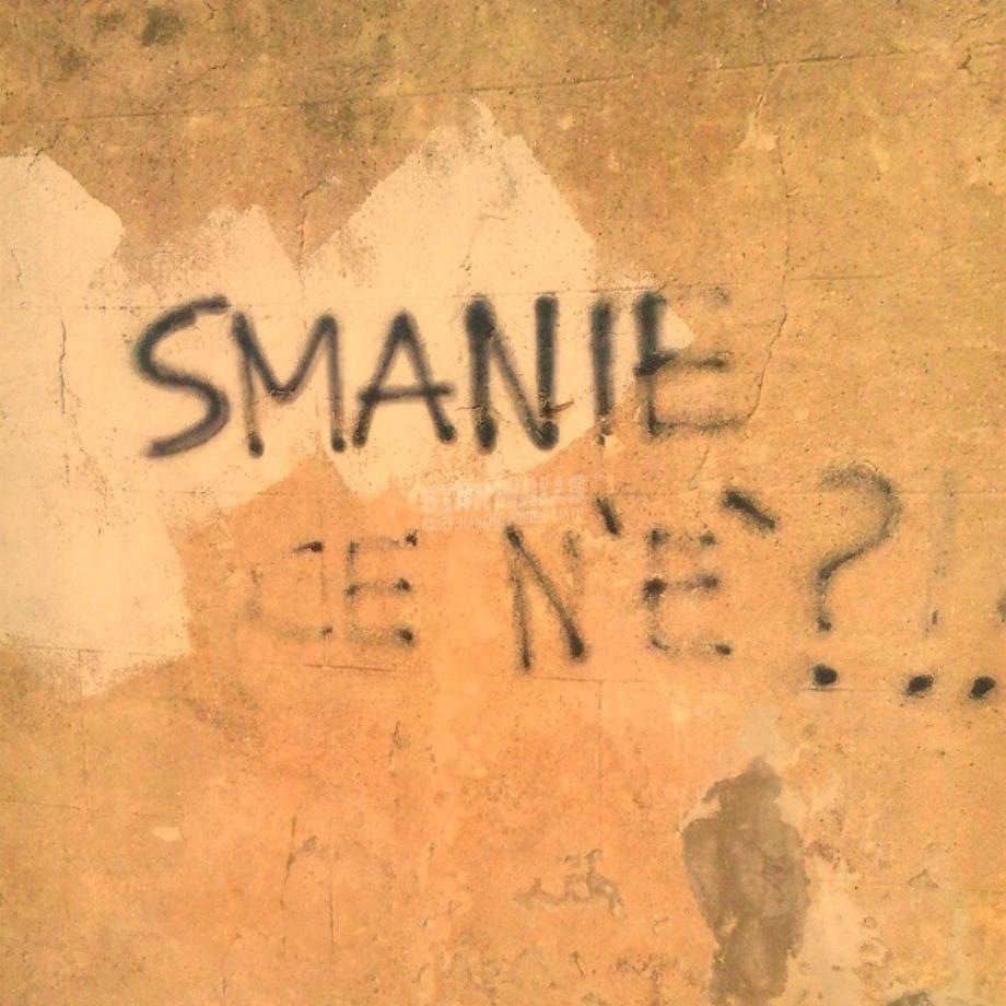 Scritte sui Muri Paturnie?