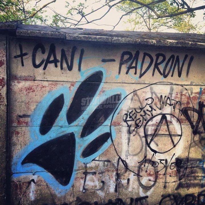 Scritte sui Muri + Quadrupedi