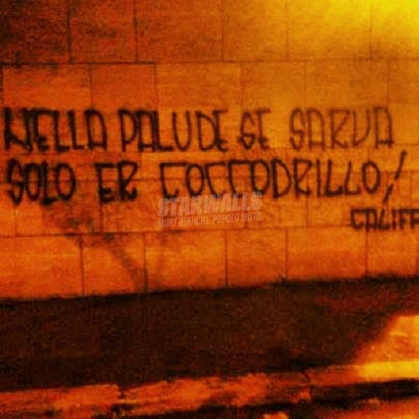 Scritte sui Muri Califfo