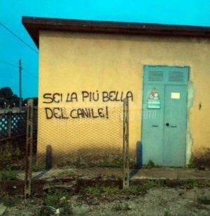 Scritte sui Muri Miss