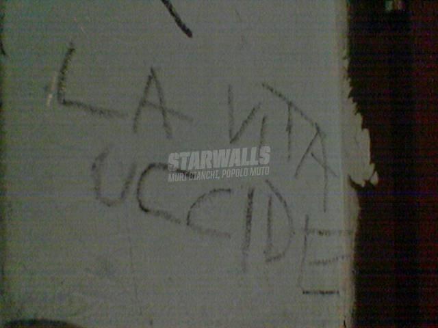 Scritte sui Muri mò me lo segno..
