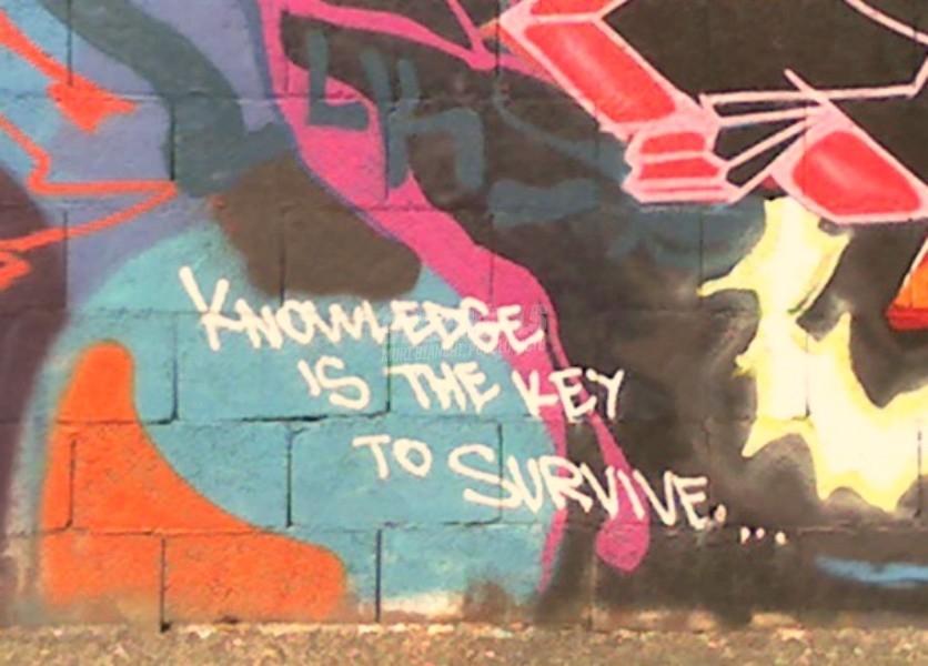 Scritte sui Muri Knowledge is power