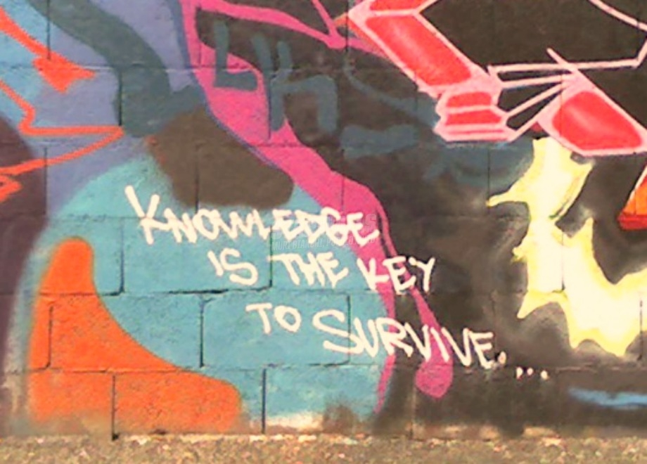 Scritte sui Muri Knowledge is power