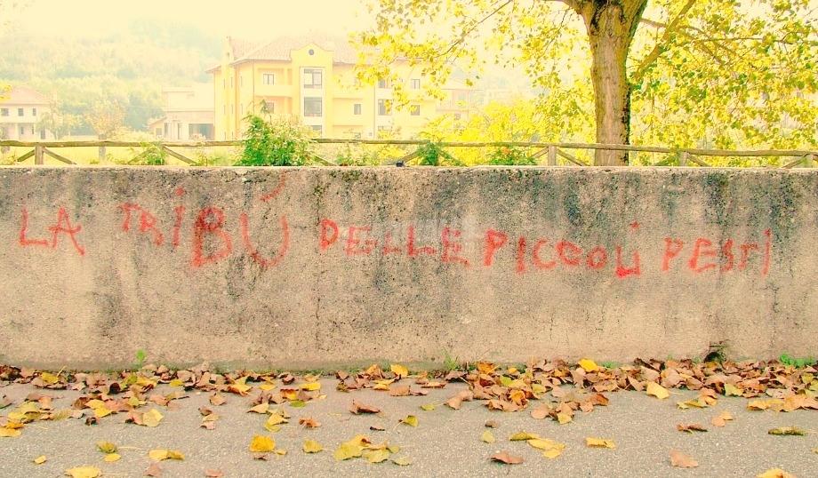 Scritte sui Muri Praticamente ingestibbili
