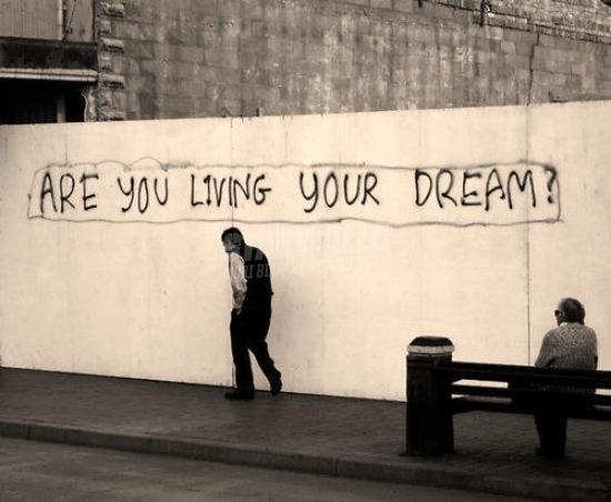 Scritte sui Muri Honestly
