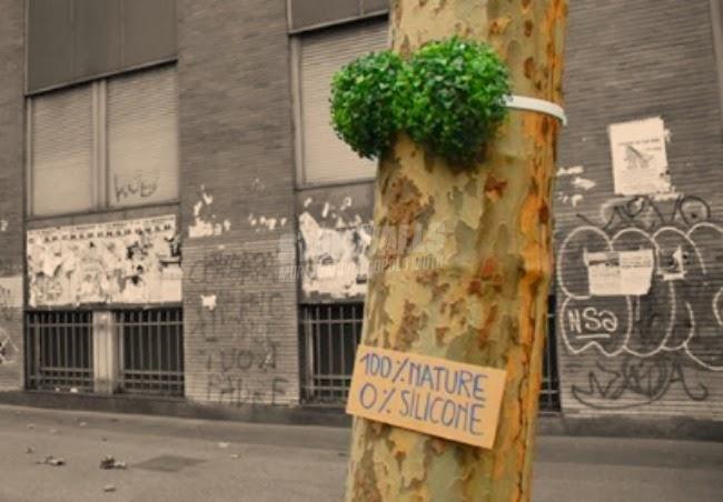 Scritte sui Muri Tutta natura