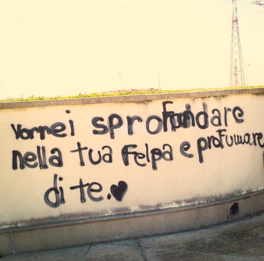 Scritte sui Muri La Isoardi a Salvini