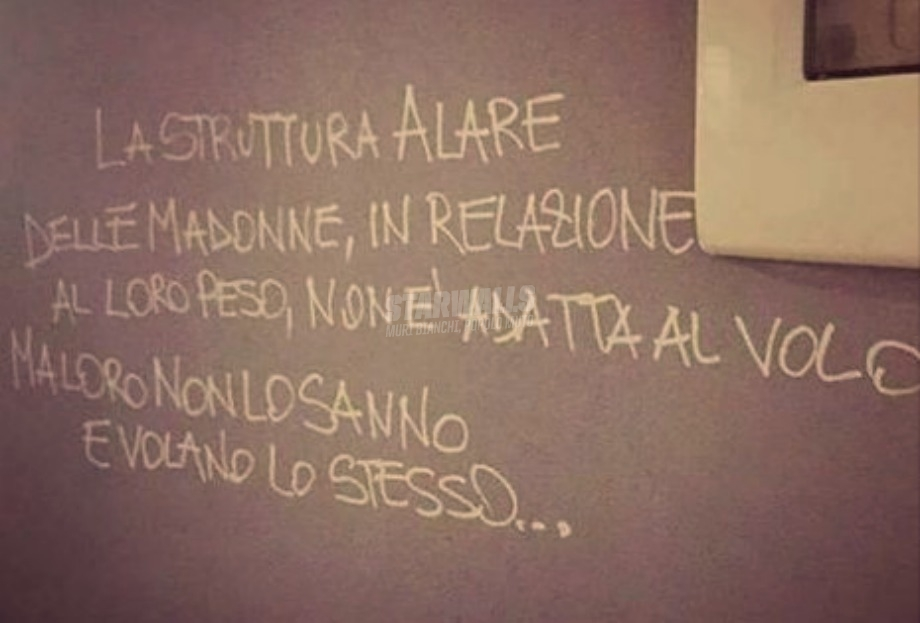 Scritte sui Muri Maria Santissima