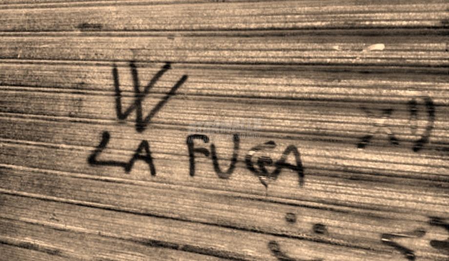 Scritte sui Muri Viva
